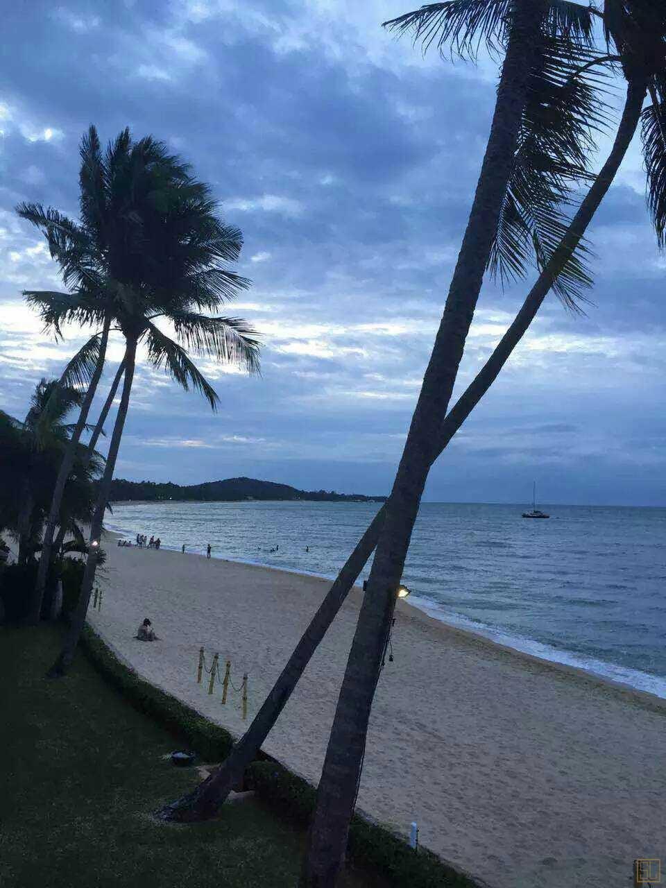 密斯卡湾莲花别墅预订,苏梅岛湄南海滩别墅,公寓,酒店